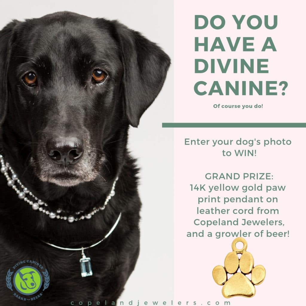 Divine Canines Drawing